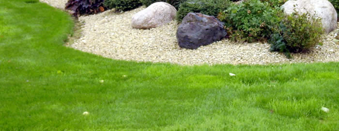 Wausau Lawn Fertilizing Services