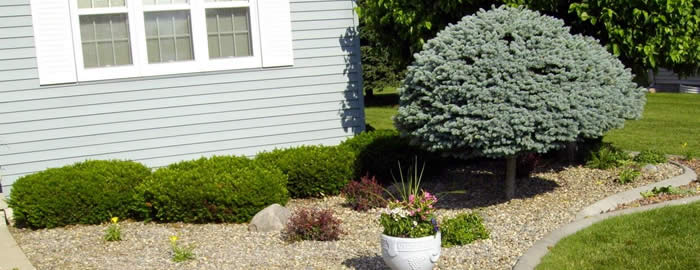 Wausau Shrub and Flower Bed Installation Services